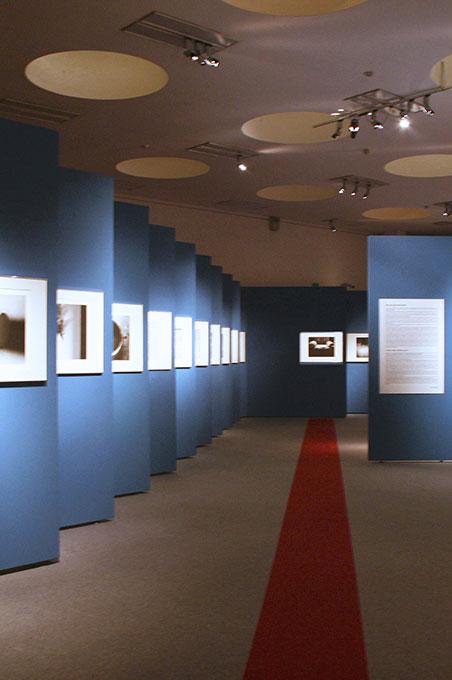 Allestimento mostre Museo della Permanente - Torah Percorso allestimento